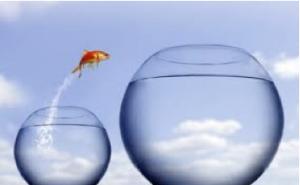 fishbowl-300x185